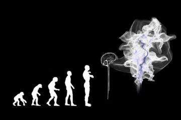 Προσαρμογή στα νέα δεδομένα ως στρατηγική διαχείρισης Λεβέντης Δαρβίνος